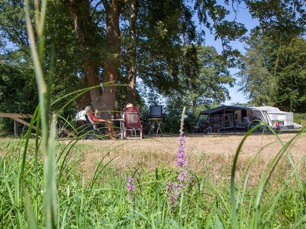 Kamperen-comfort - tenten verhuren op een camping
